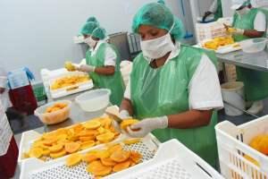 Agroexportaciones peruanas llegaron a 140 mercados el 2020 revela Adex