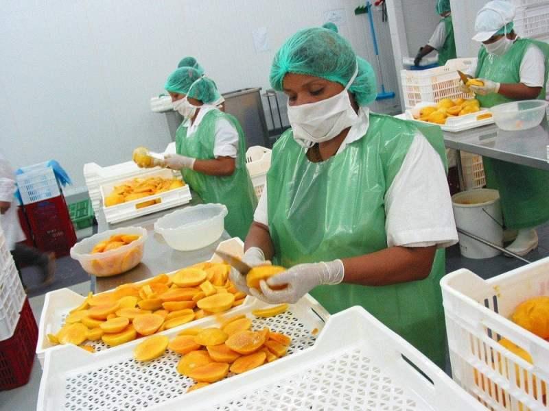 Exportación de mangos según Adex