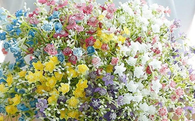 Adex y las flores
