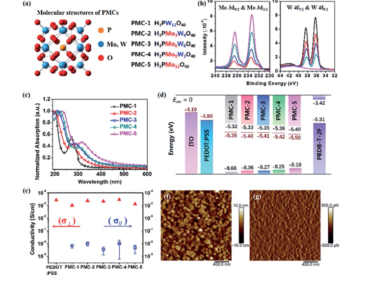 The chemical structure and photophysics of PMCs.