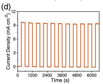Solar Simulator AM1.5G Chopping Current Density
