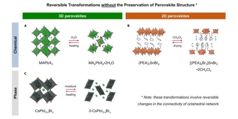Joule Perovskite instability Solar Simulator Quantum Efficiency 太陽光模擬器 量子效率