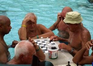 Les fameux joueurs d'échecs