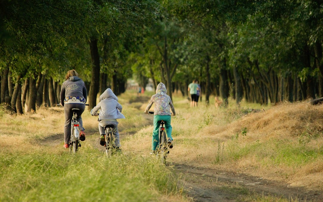 Eficacia de los padres en la adquisición de estilos de vida saludables por sus hijos