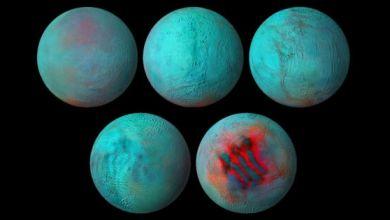صورة ناسا تجد جليدًا حديثًا على قمر إنسيلادوس التابع لكوكب زحل
