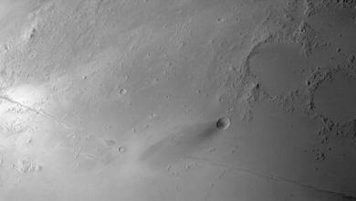 مسبار-الأمل-يدخل-مداره-النهائي-حول-المريخ-استعدادًا-لبدء-مهمته-العلمية