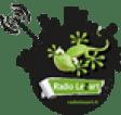 Logo Radiolezard