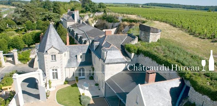 Chateau H Loire