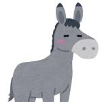羊の赤ちゃんを運ぶ馬&ロバがかわゆすぎる😍