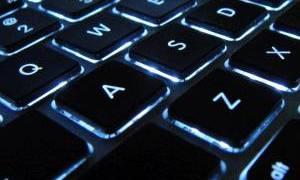 よく猫がキーボードの上に乗って邪魔しますが、文鳥もくっそ邪魔です
