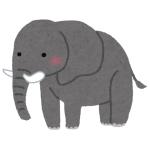 池に落ちた子象を迅速なチームワークで救助する象さん達