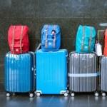 """父が妹に買ったスーツケース、配色のせいで""""あのキャラ""""にしか見えないwww"""