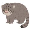 ネズミを追いかけるマヌルネコの超高速猫パンチが可愛すぎるwww