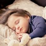 明るい場所でもぐっすり眠れそうな「安眠ドーム」がよさげ