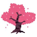 桜の木の下に停めていた車のヒーターを点けたら…うおッ!