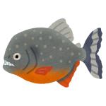 しながわ水族館にある「ピラニア」の説明イラストがシュールすぎるwww