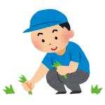 """「シュールにも程があるww」…アジアのある農家による""""除草マシーン""""の動作風景が話題に"""