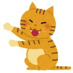 """「これは神々しい…」ある猫さんが見つけた""""一番暖かい場所""""がコチラwww"""