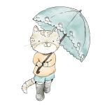「これは最高じゃないか…」猫飼いの人がAmazonで傘を買うべき理由がこちら😸