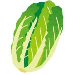 「ある意味1/4カット…」とあるスーパーの白菜の切り方が斜め上すぎたwww