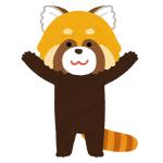"""【悲報】動物園に行ったら…レッサーパンダが""""たれぱんだ""""と化していたwww"""