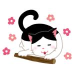 【事故】猫さん、マタタビをキメすぎた結果…🙀