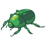 【SSR】害虫スプレーと間違って「銀スプレー」をかけられたコガネムシがコチラwwwww
