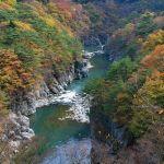 【バブル】鬼怒川温泉はいかにして衰退の道を辿ったのか? 最盛期のエピソードが実に興味深い…😨
