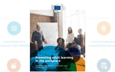 Zaključno poročilo o spodbujanju izobraževanja odraslih na delovnem mestu