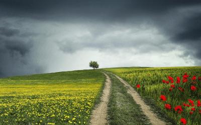 Učenje, življenje in Prebiranja na daljavo
