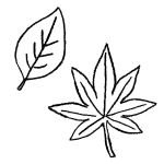 もみじの葉っぱのフリー素材イラスト