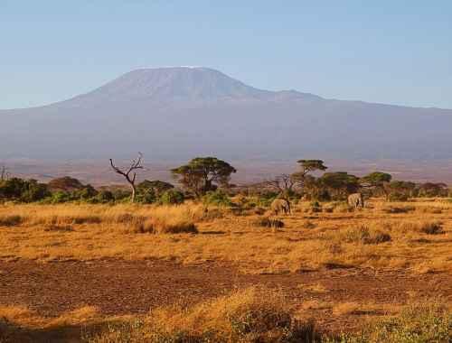 voyage afrique tourisme organisation