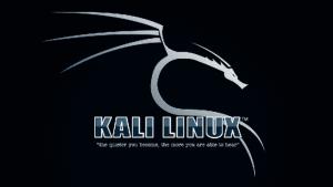 Tổng hợp Kali Linux commands