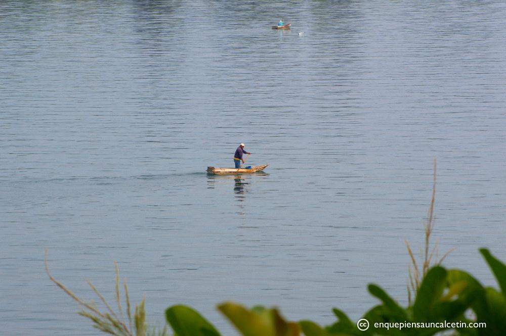 La vida en el lago.