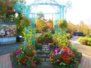 ガーデンミュージアム 花でアレンジしたハートマーク