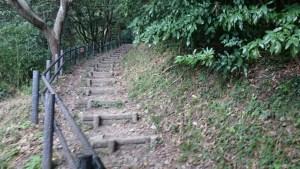 経ケ岬灯台までの道