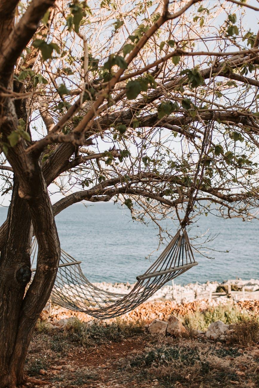 brown hammock hanging under a tree