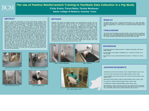 The Use of Positive Reinforcement Training to Facilitate Data Collection in a Pig Study