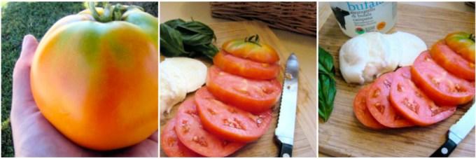 tomatoes, sliced tomatoes, sliced tomatoes and slice mozzarella, ingredients for Caprese salad