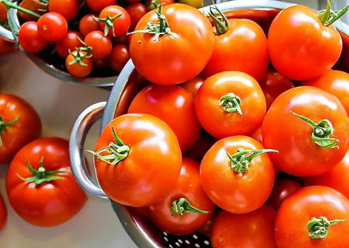 tomates para hacer salsa de tomate