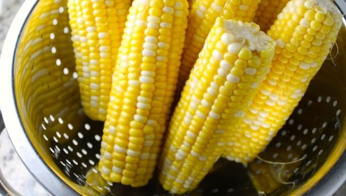 corn on the cob to make cachapas with queso de mano