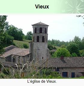 vieux village tarn