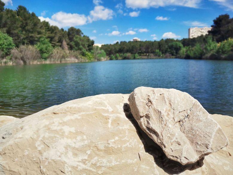 lac des garrigues montpellier