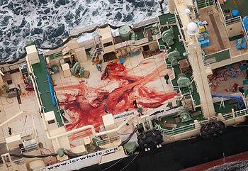 Japanese whaler
