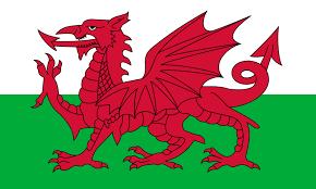 Gales - selecciones raras de fútbol que jugaron un solo Mundial de Fútbol