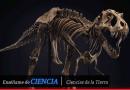 Libros de dinosaurios en PDF