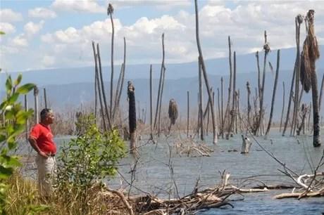 Aguas del lago Enriquillo continúan subiendo