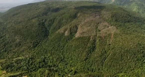 Falcondo dice puede explotar Loma Miranda sin causar daños