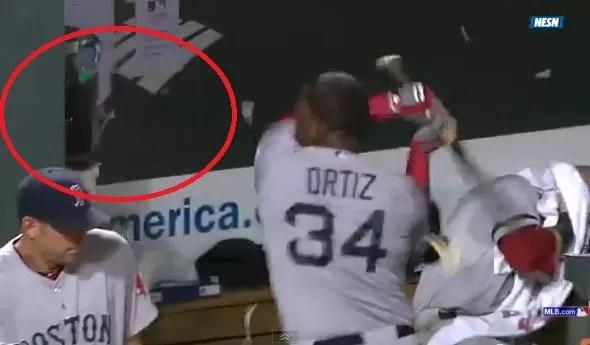 David Ortíz no será suspendido por romper teléfonos