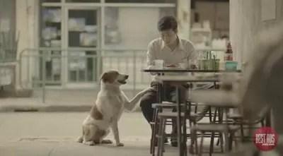 Una emotiva campaña a favor de la bondad del ser humano arrasa en YouTube